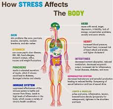 stress muscle aches