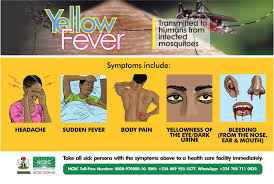 sudden fever and body pain