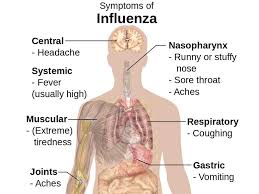 fever with chills and body pain